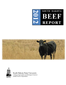 South Dakota Beef Report, 2012