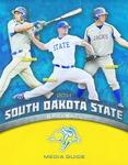 2014 South Dakota State Baseball Media Guide by South Dakota State University