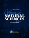 College of Natural Sciences 2020 Year-End Publication by College Of Natural Sciences