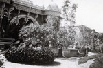 Garden in Harbin, China in 1924