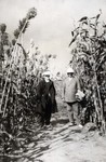 N.E. Hansen in a Kaoliang sorghum field at Echo in Manchuria, China in 1924