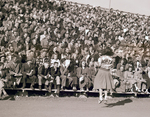 Cheerleaders and crowd at 1948 Hobo Day football game