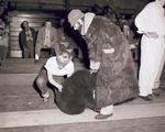 Hobo Day Beard Contest, 1953