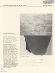 South Dakota Art Museum News, Winter 1988-89