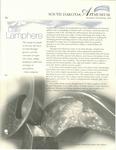 South Dakota Art Museum Newsletter, Winter/Spring 2004 by South Dakota State University